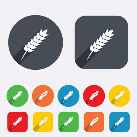 Gluten free sign icon. No gluten symbol. Circles and rounded squares 12 buttons. Vector Vector