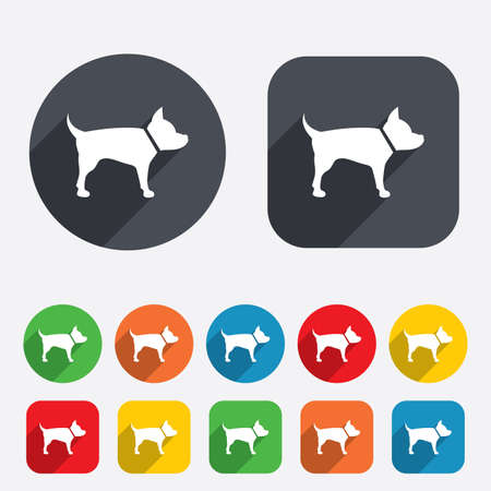 dog allowed: Dog sign icon. Pets symbol. Circles and rounded squares 12 buttons. Vector Illustration