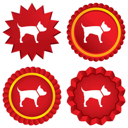 dog allowed: Dog sign icon. Pets medal symbol. Red stars stickers. Certificate emblem labels. Stock Photo