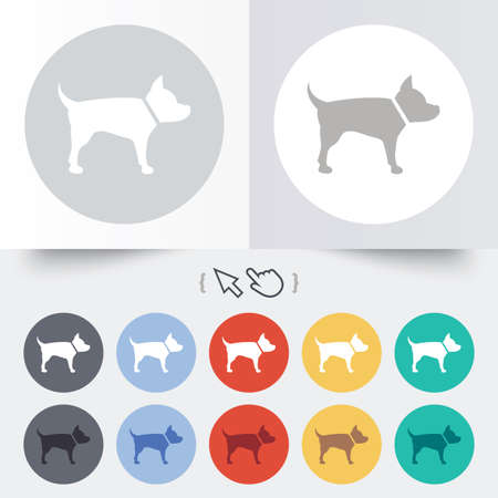 dog allowed: Dog sign icon. Pets symbol. Round 12 circle buttons. Shadow. Hand cursor pointer. Illustration