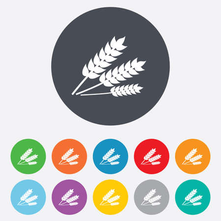 Agricultural sign icon. Gluten free or No gluten symbol. Round colourful 11 buttons.  Vector