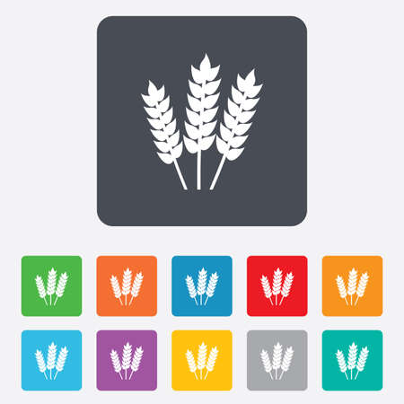 Agricultural sign icon. Gluten free or No gluten symbol. Rounded squares 11 buttons. Vector Vector