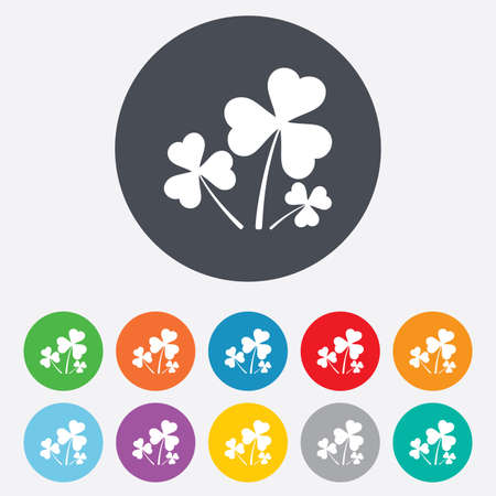 clovers: Clovers with three leaves sign. St. Patrick Illustration