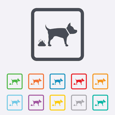 Feces sign icon. Clean up after pets symbol. Put it in the bag. Round squares buttons with frame. Vector