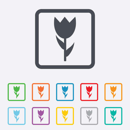 Flower sign icon. Rose symbol. Macro. Round squares buttons with frame. Vector Vector