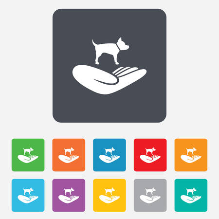 animal shelter: Shelter pets sign icon. Hand holds dog symbol. Animal protection. Rounded squares 11 buttons.
