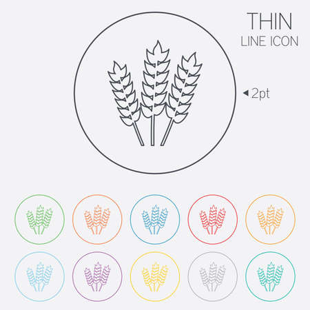 Agricultural sign icon. Gluten free or No gluten symbol. Thin line circle web icons with outline. Vector