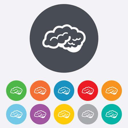 cerebellum: Brain with cerebellum sign icon. Human intelligent smart mind. Round colourful 11 buttons. Vector