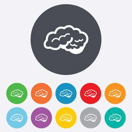 Brain with cerebellum sign icon. Human intelligent smart mind. Round colourful 11 buttons. Vector
