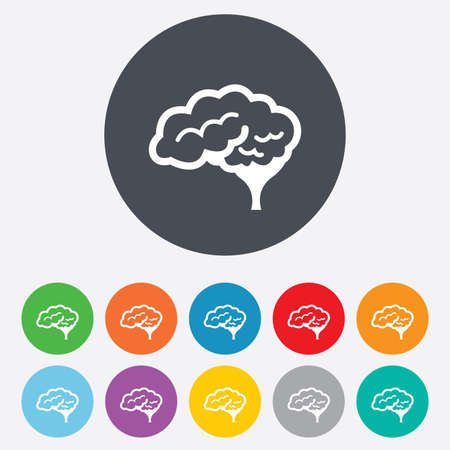 cerebellum: Brain with cerebellum sign icon. Human intelligent smart mind. Round colourful 11 buttons. Vector