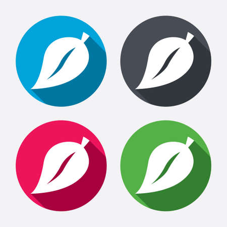 Leaf sign icon.  Vector
