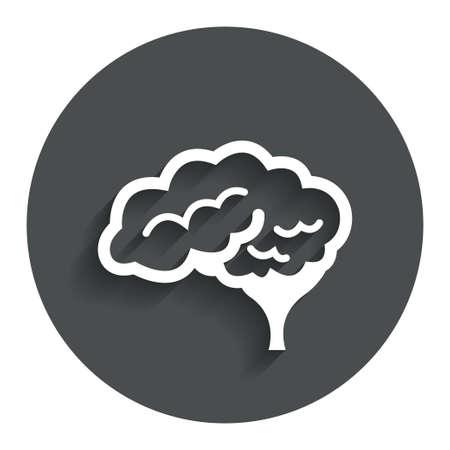 cerebellum: Brain with cerebellum sign icon. Human intelligent smart mind. Gray flat button with shadow. Modern UI website navigation. Vector
