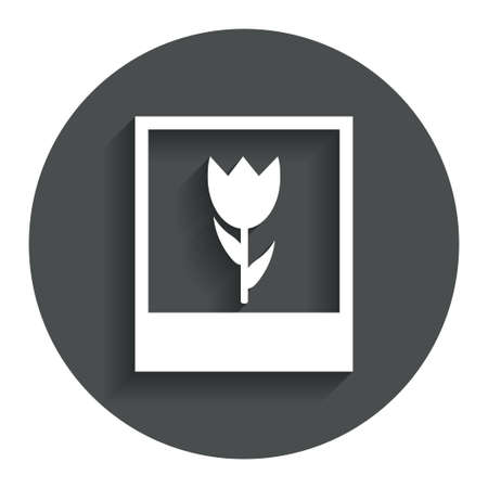 photography frame: Macro photo frame sign icon. Flower photography symbol. Gray flat button with shadow. Modern UI website navigation. Vector