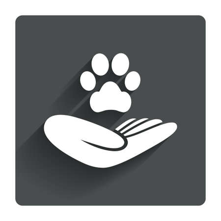 animal shelter: Shelter pets sign icon. Hand holds paw symbol. Animal protection. Gray flat square button with shadow. Modern UI website navigation. Vector