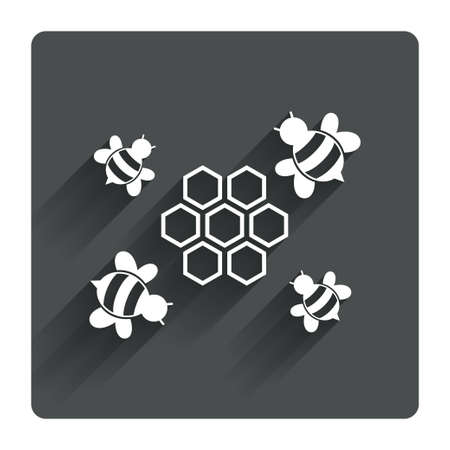 paper wasp: Honeycomb with bees sign icon. Honey cells symbol. Sweet natural food. Gray flat square button with shadow. Modern UI website navigation. Vector