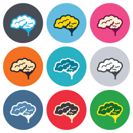 Brain with cerebellum sign icon. Human intelligent smart mind. Colored round buttons. Flat design circle icons set. Vector