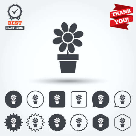 macro flowers: Flowers in pot icon. Bouquet of flowers with petals. Macro sign. Circle, star, speech bubble and square buttons. Award medal with check mark. Thank you ribbon. Vector