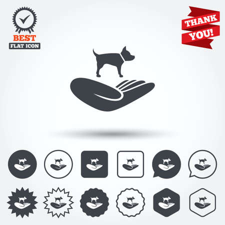 animal shelter: Shelter pets sign icon. Hand holds dog symbol. Animal protection. Circle, star, speech bubble and square buttons. Award medal with check mark. Thank you ribbon. Vector
