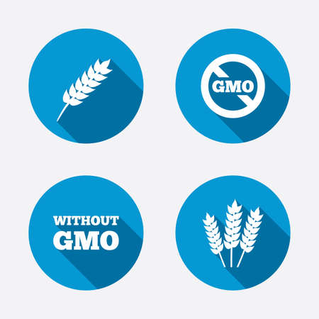 genetically modified crops: Agricultural icons. Gluten free or No gluten signs. Without Genetically modified food symbols. Circle concept web buttons. Vector