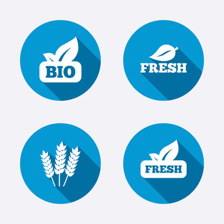 agricultural: Natural fresh Bio food icons. Gluten free agricultural sign symbol. Circle concept web buttons. Vector Illustration