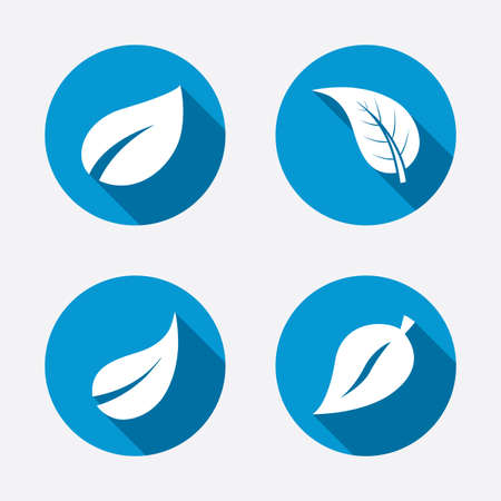 fresh flowers: Leaf icon. Fresh natural product symbols. Tree leaves signs. Circle concept web buttons. Vector