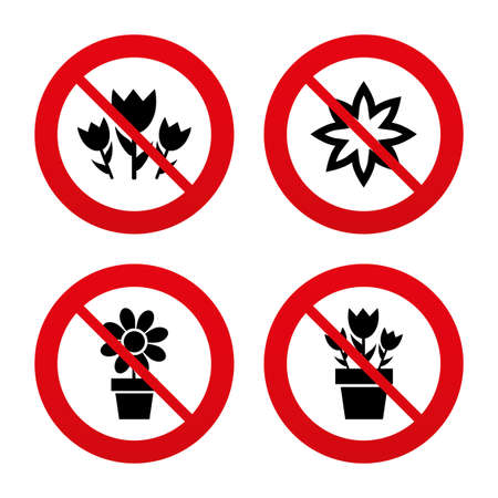 camomiles macro: No, Ban or Stop signs. Flowers icons. Bouquet of roses symbol. Flower with petals and leaves in a pot. Prohibition forbidden red symbols. Vector