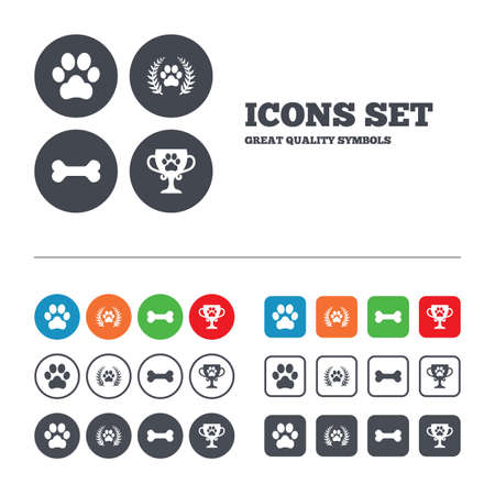 pets: Pets icons. Dog paw sign. Winner laurel wreath and cup symbol. Pets food. Web buttons set. Circles and squares templates. Vector