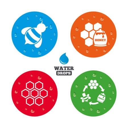 miel de abeja: Gotas de agua sobre el botón. Icono de miel. Las células del panal con abejas símbolo. Signos de alimentos dulces naturales. Las gotas de agua pura realistas en círculos. Vector