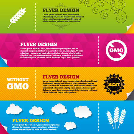 genetically modified crops: Flyer brochure designs. Agricultural icons. Gluten free or No gluten signs. Without Genetically modified food symbols. Frame design templates. Vector