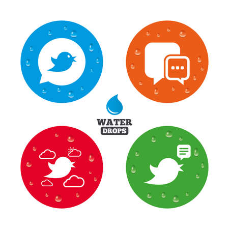 info icon: Water drops on button. Birds icons. Social media speech bubble. Chat bubble with three dots symbol. Realistic pure raindrops on circles. Vector