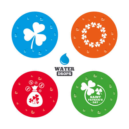 clover button: Water drops on button. Saint Patrick day icons. Money bag with clover sign. Wreath of trefoil shamrock clovers. Symbol of good luck. Realistic pure raindrops on circles. Vector Illustration