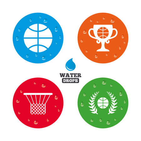 Water drops on button. Basketball sport icons. Ball with basket and award cup signs. Laurel wreath symbol. Realistic pure raindrops on circles. Vector
