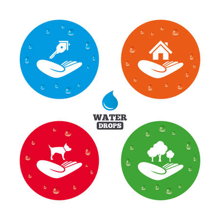 shelter: Water drops on button. Helping hands icons. Shelter for dogs symbol. Home house or real estate and key signs. Save nature forest. Realistic pure raindrops on circles. Vector