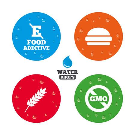 stabilizers: Gotas de agua sobre el bot�n. Icono de aditivo alimentario. Hamburguesa signo de comida r�pida. Gluten s�mbolos libres y Sin OGM. Sin estabilizadores de �cido E. Las gotas de agua pura realistas en c�rculos. Vector Vectores