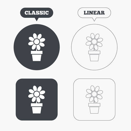 macro flowers: Flowers in pot icon. Bouquet of flowers with petals. Macro sign. Classic and line web buttons. Circles and squares. Vector Illustration