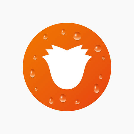 kropla deszczu: Water drops on button. Flower sign icon. Rose symbol. Realistic pure raindrops. Orange circle. Vector Ilustracja