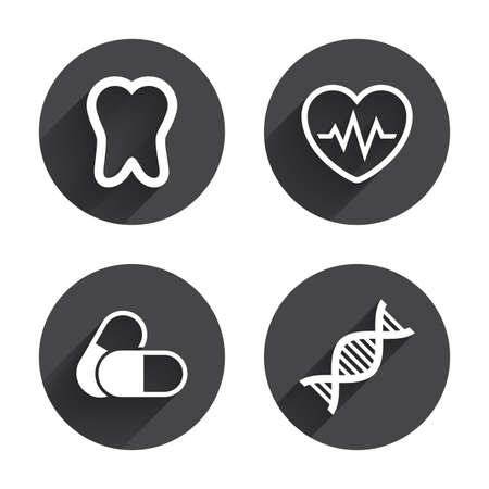 deoxyribonucleic acid: Maternity icons. Pills, tooth, DNA and heart cardiogram signs. Heartbeat symbol. Deoxyribonucleic acid. Dental care. Circles buttons with long flat shadow. Vector Illustration