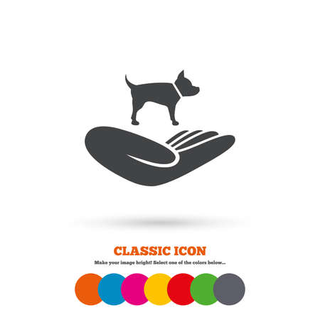 animal shelter: Shelter pets sign icon. Hand holds dog symbol. Animal protection. Classic flat icon. Colored circles. Vector Illustration