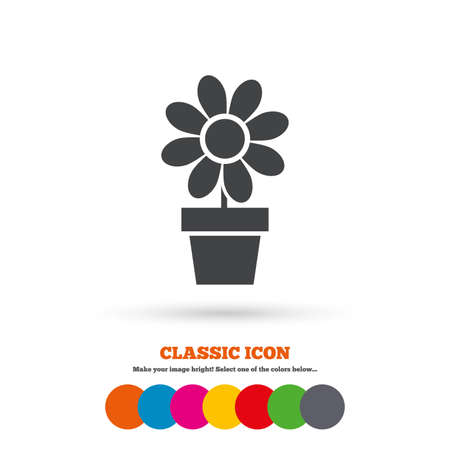 macro flowers: Flowers in pot icon. Bouquet of flowers with petals. Macro sign. Classic flat icon. Colored circles. Vector