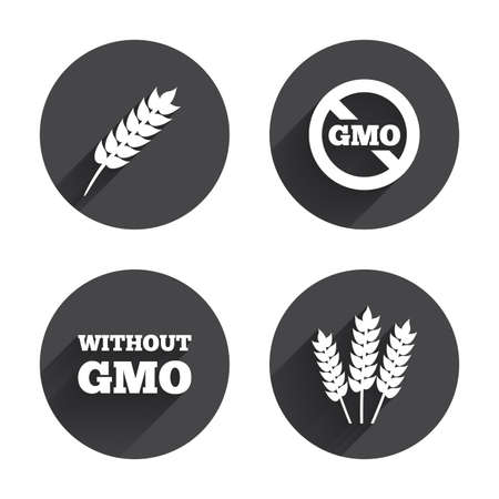 genetically modified crops: Agricultural icons. Gluten free or No gluten signs. Without Genetically modified food symbols. Circles buttons with long flat shadow. Vector