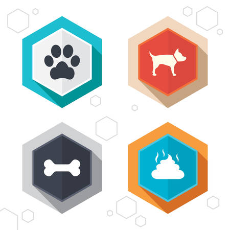 feces: Hexagon buttons. Pets icons. Dog paw and feces signs. Clean up after pets. Pets food. Labels with shadow. Vector Illustration