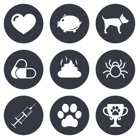 feces: Veterinary, pets icons. Dog paw, syringe and winner cup signs. Pills, heart and feces symbols. Gray flat circle buttons. Vector