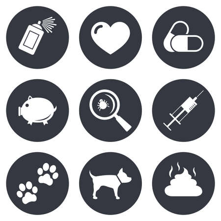 feces: Veterinary, pets icons. Dog paws, syringe and magnifier signs. Pills, heart and feces symbols. Gray flat circle buttons. Vector