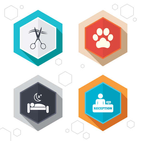 quiet room: Hexagon buttons. Hotel services icons. With pets allowed in room signs. Hairdresser or barbershop symbol. Reception registration table. Quiet sleep. Labels with shadow. Vector Illustration
