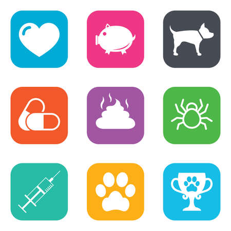 feces: Veterinary, pets icons. Dog paw, syringe and winner cup signs. Pills, heart and feces symbols. Flat square buttons. Vector