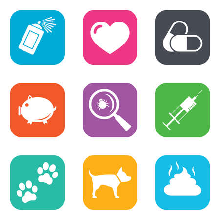 feces: Veterinary, pets icons. Dog paws, syringe and magnifier signs. Pills, heart and feces symbols. Flat square buttons. Vector