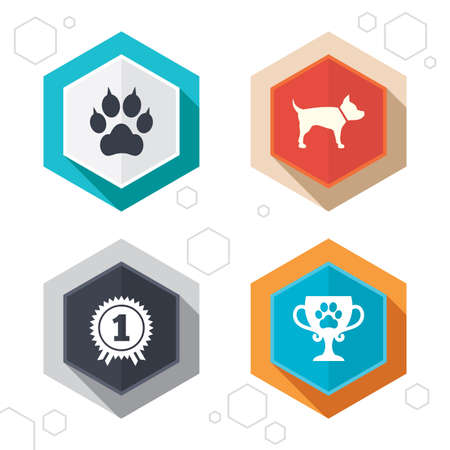 clutches: Hexagon buttons. Pets icons. Cat paw with clutches sign. Winner cup and medal symbol. Dog silhouette. Labels with shadow. Vector