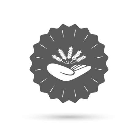 drought: Vintage emblem medal. Agriculture insurance sign icon. Hand holds wheat. Protection against crop failure and drought. Classic flat icon. Vector Illustration