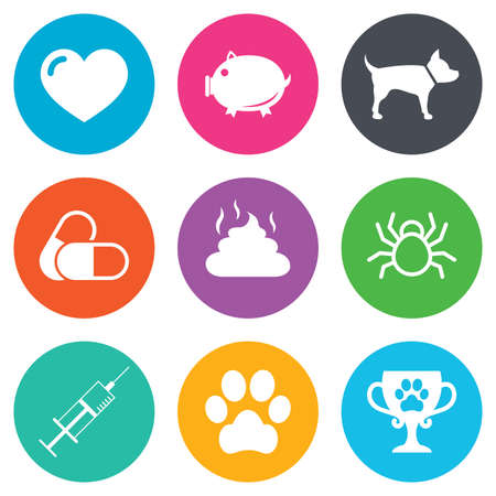feces: Veterinary, pets icons. Dog paw, syringe and winner cup signs. Pills, heart and feces symbols. Flat circle buttons. Vector