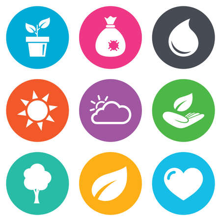 manure: Garden sprout, leaf icons. Nature and weather signs. Sun, cloud and tree symbols. Flat circle buttons. Vector